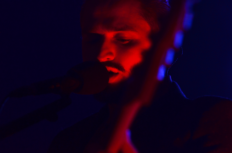 wildbeasts06.jpg