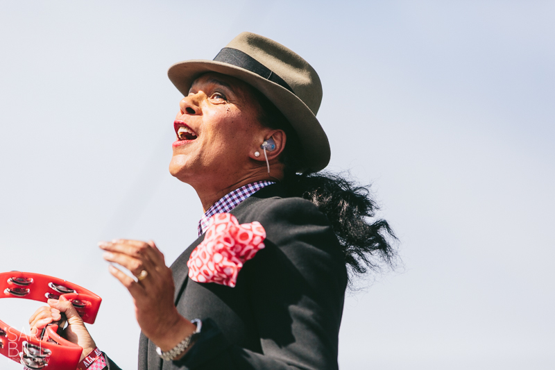 theselecter01.jpg