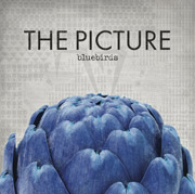 The Picture : Bluebirds EP