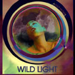 wildlightadultnights
