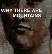 Cymbals Eat Guitars : Why There Are Mountains