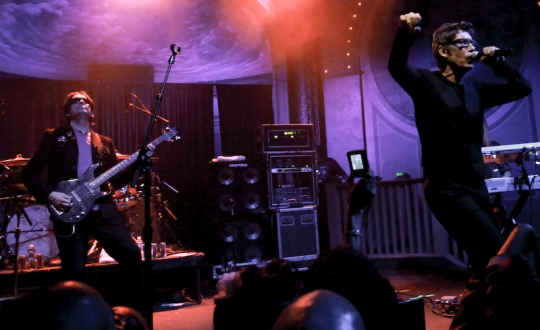 Psychedelic Furs : Live