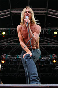 Iggy Pop - as if you had to be told