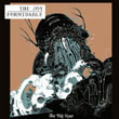 The Joy Formidable : The Big Roar