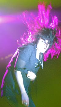 whip the hair