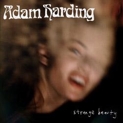 Adam Harding : Strange Beauty
