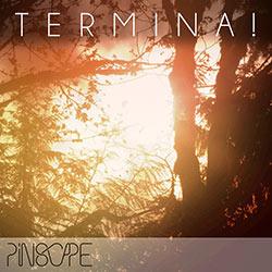 Pinscape : Terminal!