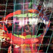 Animal Collective : Centipede Hz