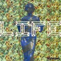 Nyteowl - Life