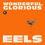 Eels : Wonderful, Glorious