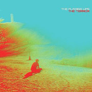 The Flaming Lips : The Terror