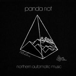 Panda Riot - Amanda In the Clouds