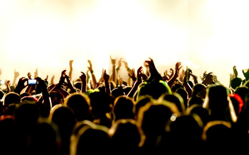2014 Festival Guide
