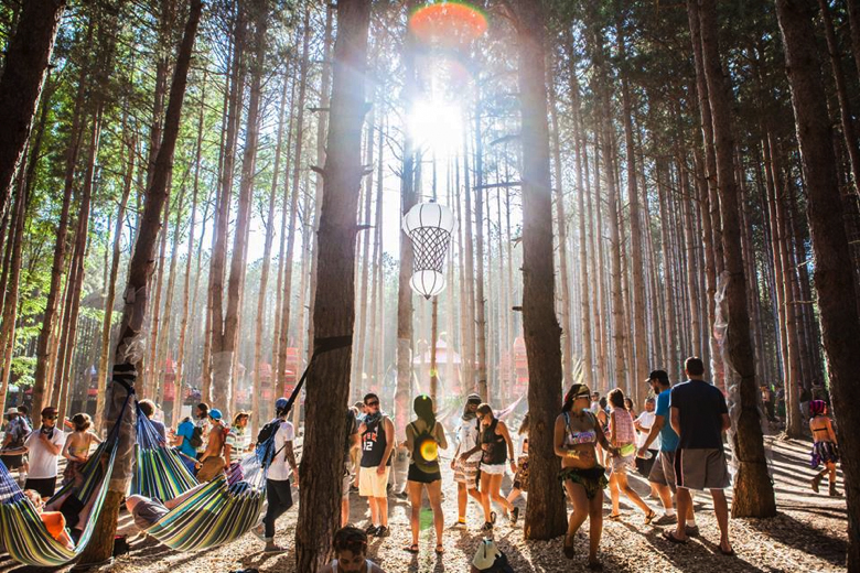 Electric Forest '14