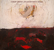 Conor Oberst : Upside Down Mountain