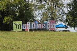 Meltasia Festival 2014 Recap