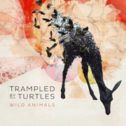 Trampled By Turtles : Wild Animals