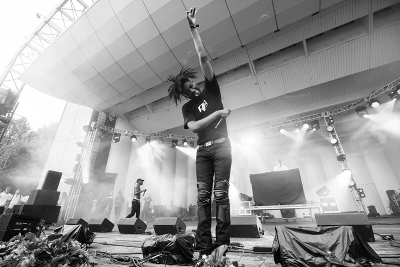 Danny Brown - by Roger Ho
