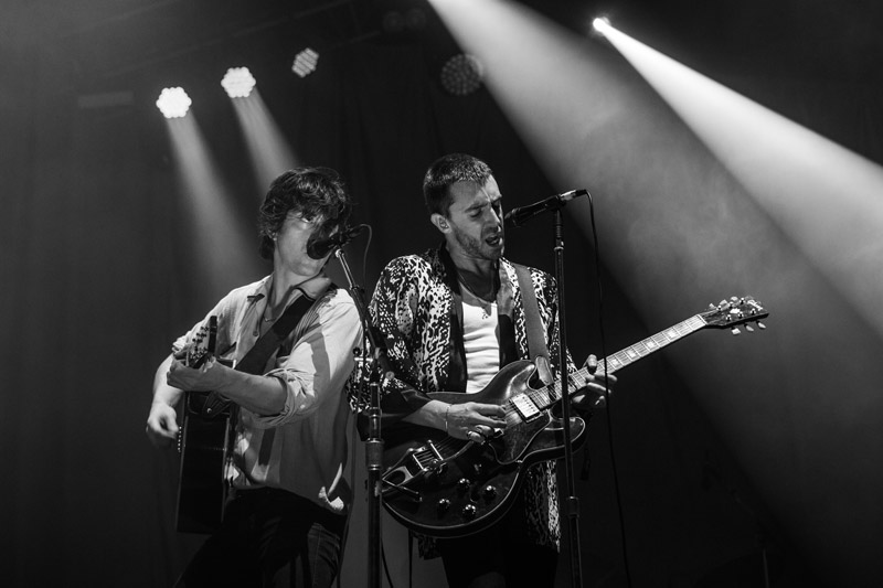 The Last Shadow Puppets - by Cambria Harkey