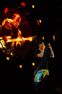 Red Hot Chili Peppers - by Cambria Harkey