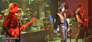 Adam Ant : Live