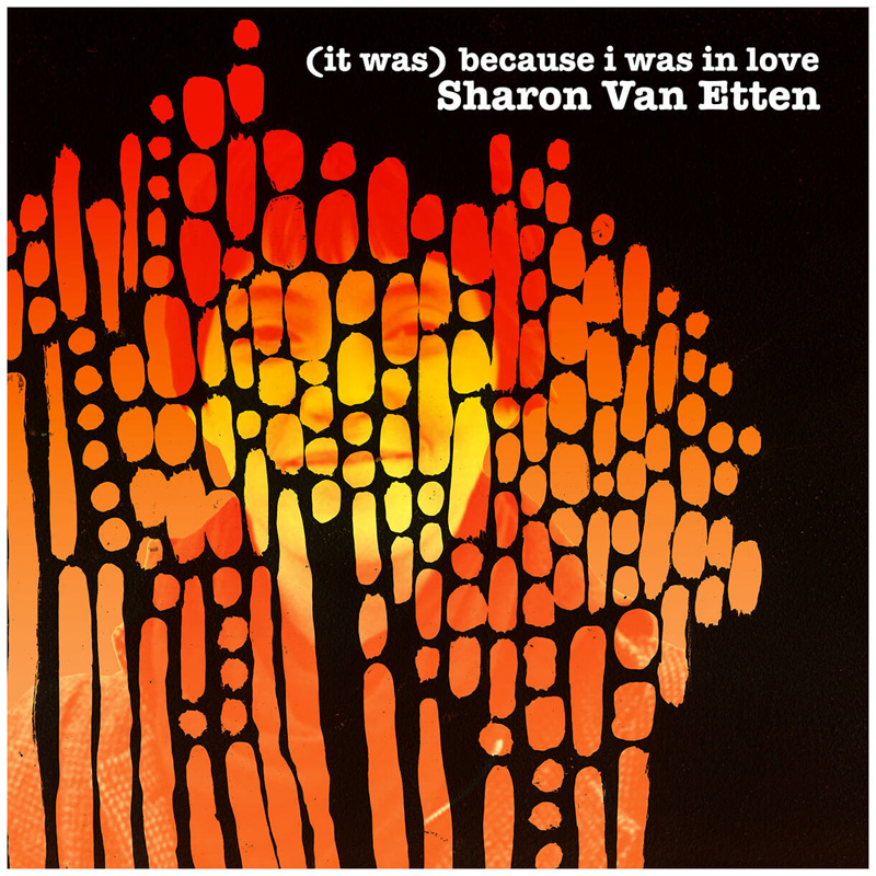 Sharon Van Etten : (it was) because i was in love