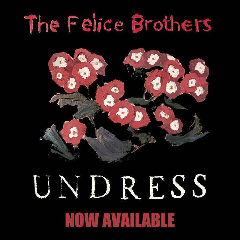 The Felice Brothers : Undress