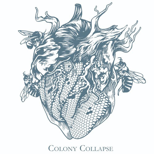 Duncan Barlow : Colony Collapse