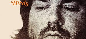 Matt Berry : Phantom Birds