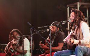 The Wailers : Live